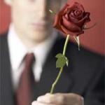 liebe-mann-rose-h